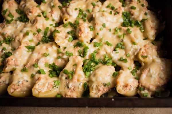 Freshly cooked stuffed pasta shells.